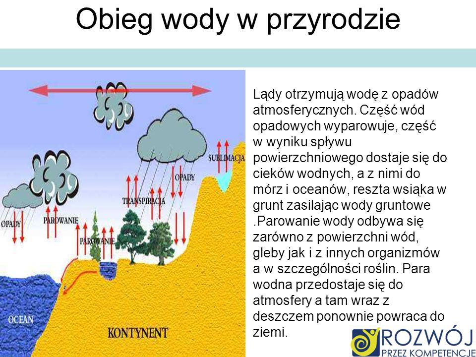 Procentowy skład wody Wszechocean -wszystkie wody na ziemi zajmują ok..