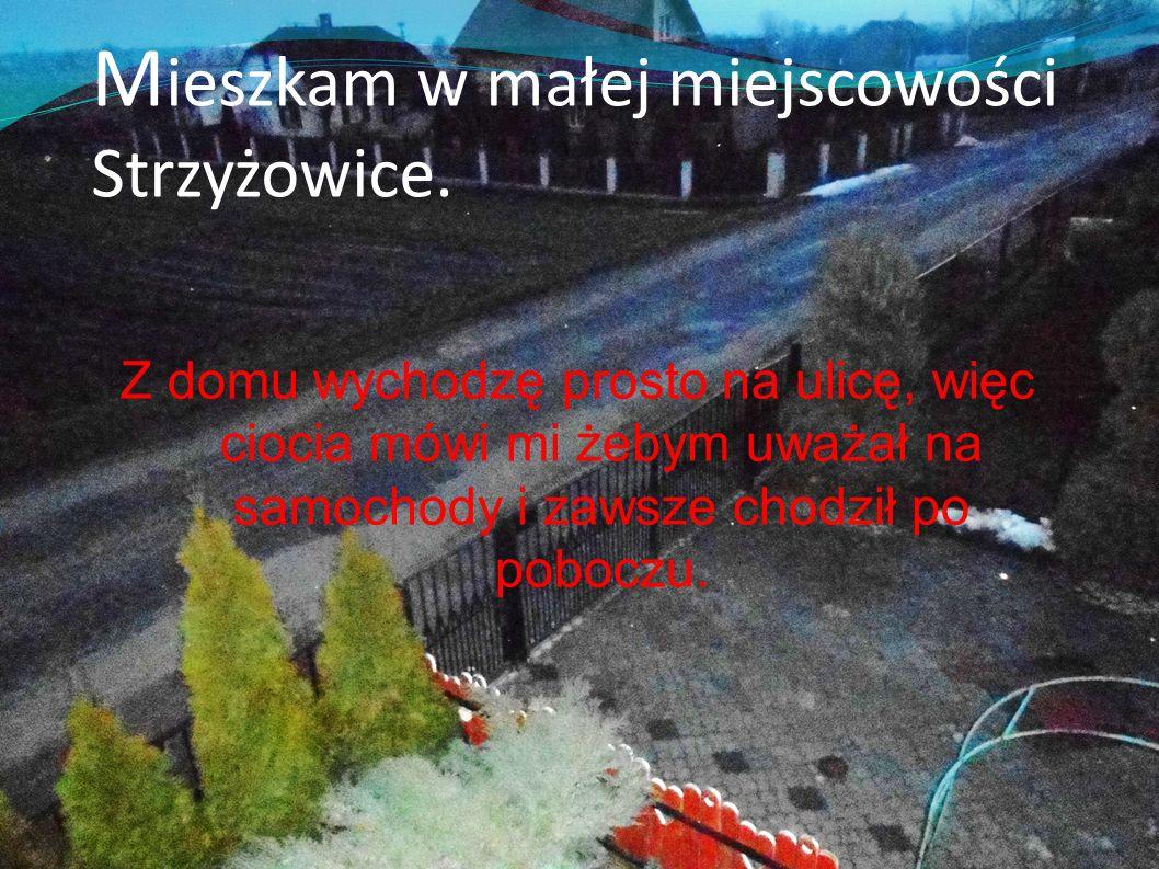 M ieszkam w małej miejscowości Strzyżowice. Z domu wychodzę prosto na ulicę, więc ciocia mówi mi żebym uważał na samochody i zawsze chodził po poboczu