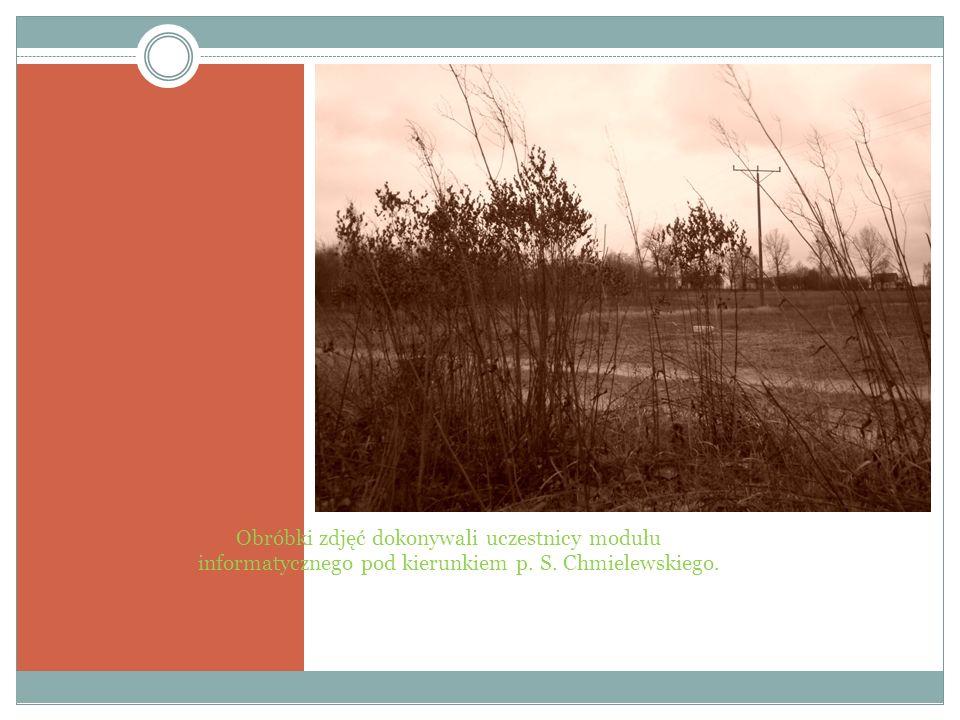 Obróbki zdjęć dokonywali uczestnicy modułu informatycznego pod kierunkiem p. S. Chmielewskiego.