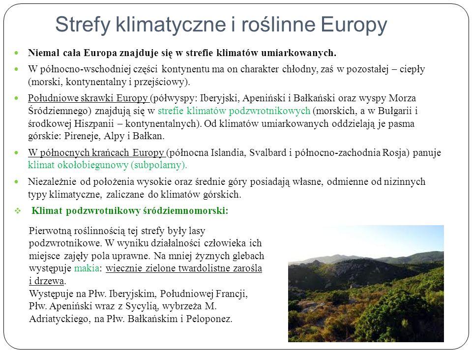 Strefy klimatyczne i roślinne Europy Niemal cała Europa znajduje się w strefie klimatów umiarkowanych. W północno-wschodniej części kontynentu ma on c