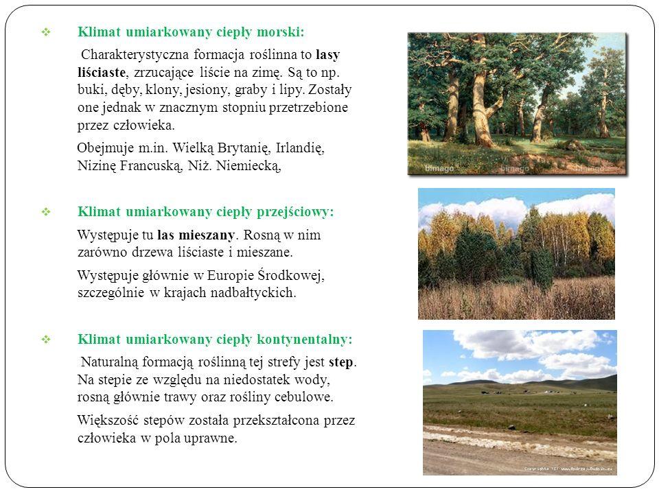 Klimat umiarkowany ciepły morski: Charakterystyczna formacja roślinna to lasy liściaste, zrzucające liście na zimę. Są to np. buki, dęby, klony, jesio