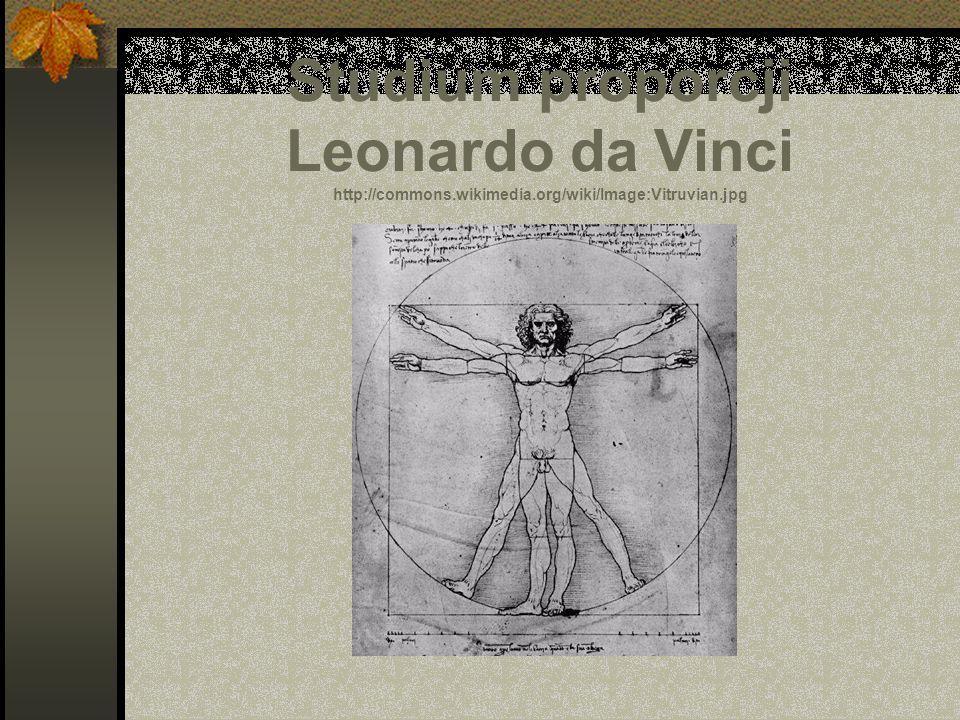 Studium proporcji Leonardo da Vinci http://commons.wikimedia.org/wiki/Image:Vitruvian.jpg