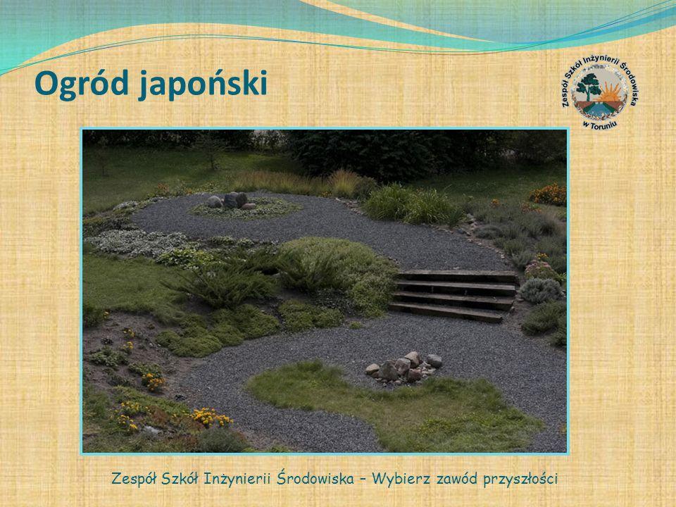 Ogród japoński Zespół Szkół Inżynierii Środowiska – Wybierz zawód przyszłości