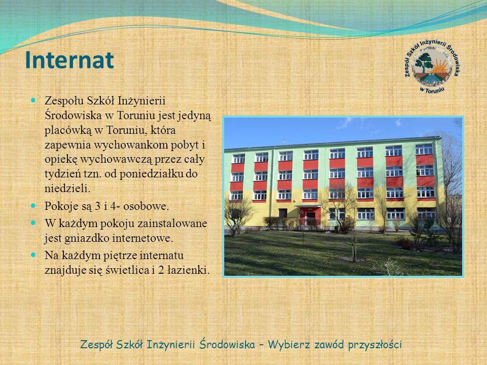 Internat Zespołu Szkół Inżynierii Środowiska w Toruniu jest jedyną placówką w Toruniu, która zapewnia wychowankom pobyt i opiekę wychowawczą przez cał