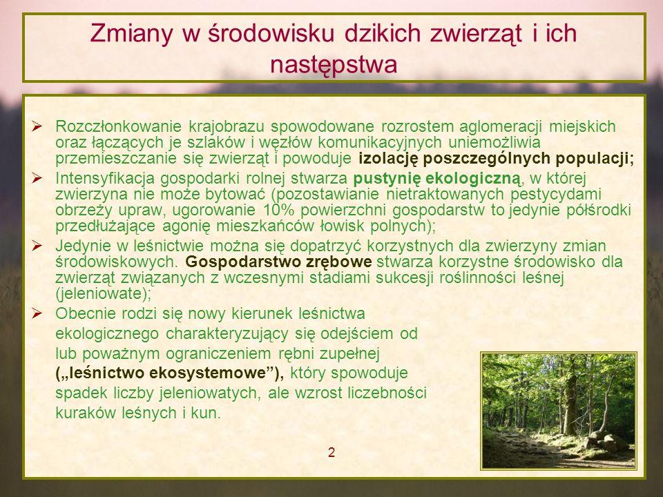 Przyszłość łowiectwa 3.