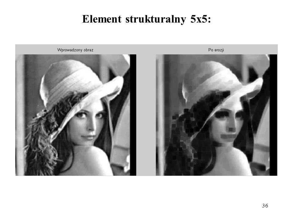 36 Element strukturalny 5x5: