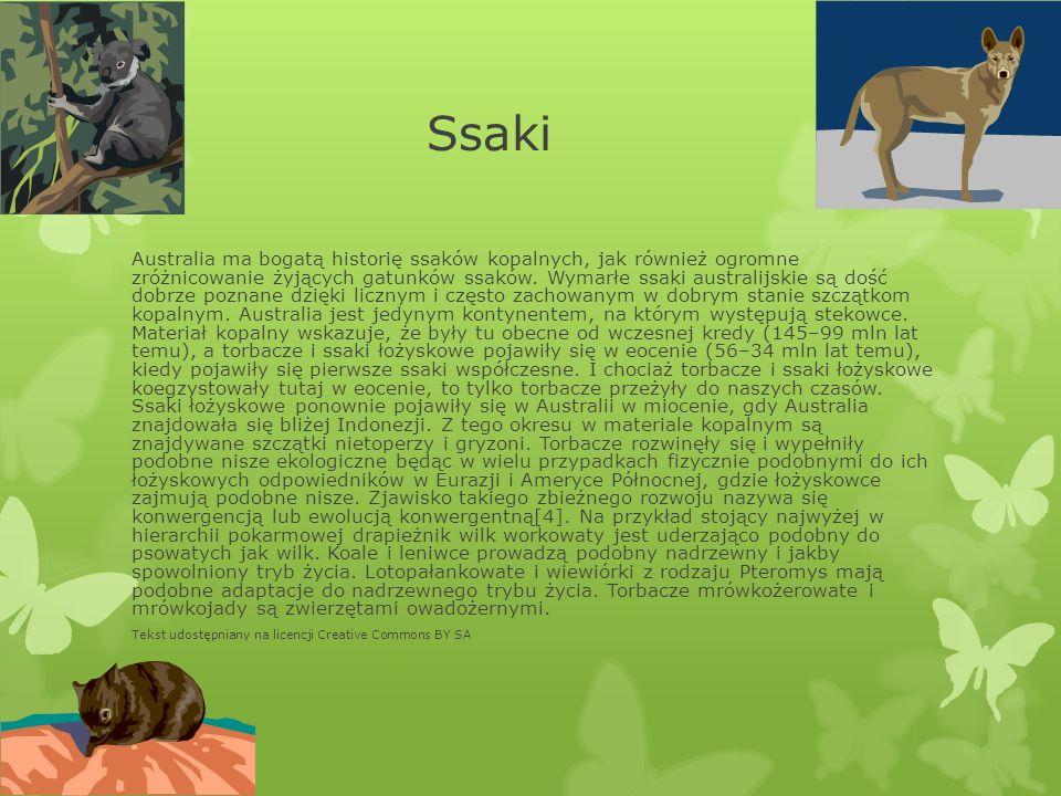 Ssaki Australia ma bogatą historię ssaków kopalnych, jak również ogromne zróżnicowanie żyjących gatunków ssaków. Wymarłe ssaki australijskie są dość d