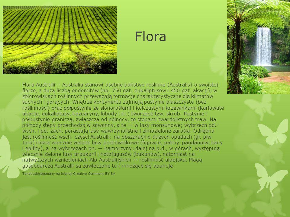 Flora Flora Australii – Australia stanowi osobne państwo roślinne (Australis) o swoistej florze, z dużą liczbą endemitów (np. 750 gat. eukaliptusów i