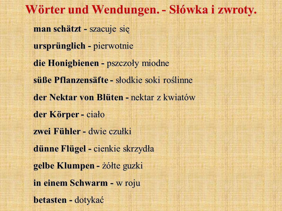 Wörter und Wendungen. - Słówka i zwroty. man schätzt - szacuje się ursprünglich - pierwotnie die Honigbienen - pszczoły miodne süße Pflanzensäfte - sł