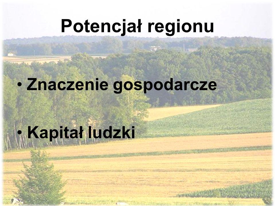 Potencjał regionu Znaczenie gospodarcze Kapitał ludzki