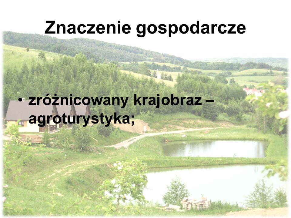 Znaczenie gospodarcze zróżnicowany krajobraz – agroturystyka;
