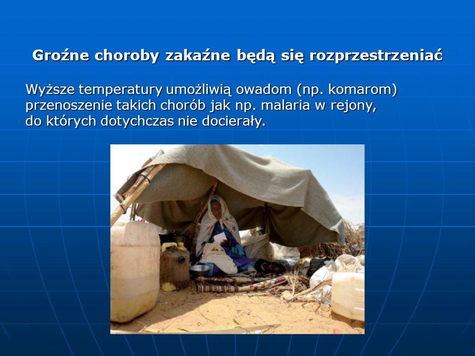 Groźne choroby zakaźne będą się rozprzestrzeniać Wyższe temperatury umożliwią owadom (np. komarom) przenoszenie takich chorób jak np. malaria w rejony