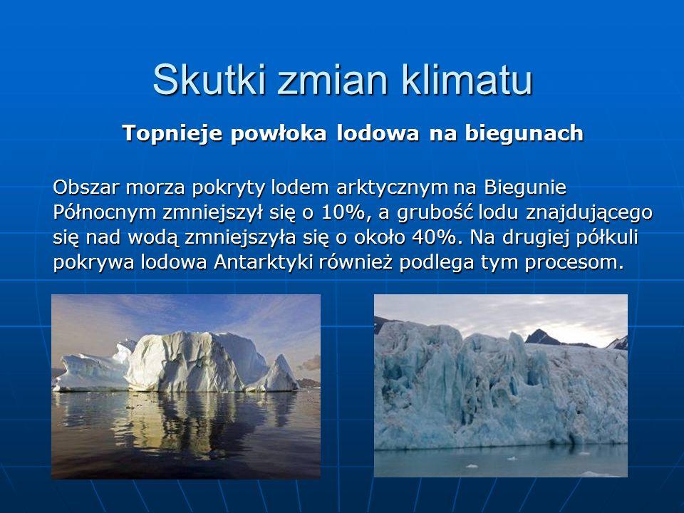 Skutki zmian klimatu Topnieje powłoka lodowa na biegunach Obszar morza pokryty lodem arktycznym na Biegunie Północnym zmniejszył się o 10%, a grubość
