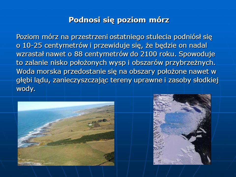 Podnosi się poziom mórz Poziom mórz na przestrzeni ostatniego stulecia podniósł się o 10-25 centymetrów i przewiduje się, że będzie on nadal wzrastał