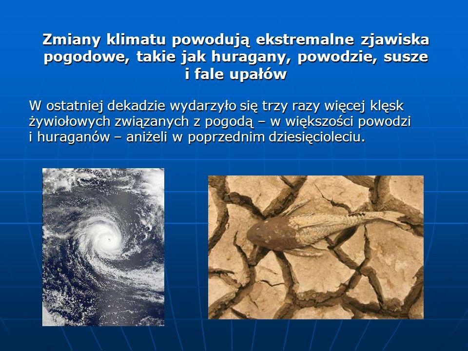 Zmiany klimatu powodują ekstremalne zjawiska pogodowe, takie jak huragany, powodzie, susze i fale upałów W ostatniej dekadzie wydarzyło się trzy razy