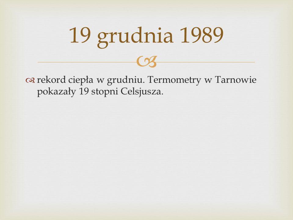 rekord ciepła w grudniu. Termometry w Tarnowie pokazały 19 stopni Celsjusza. 19 grudnia 1989