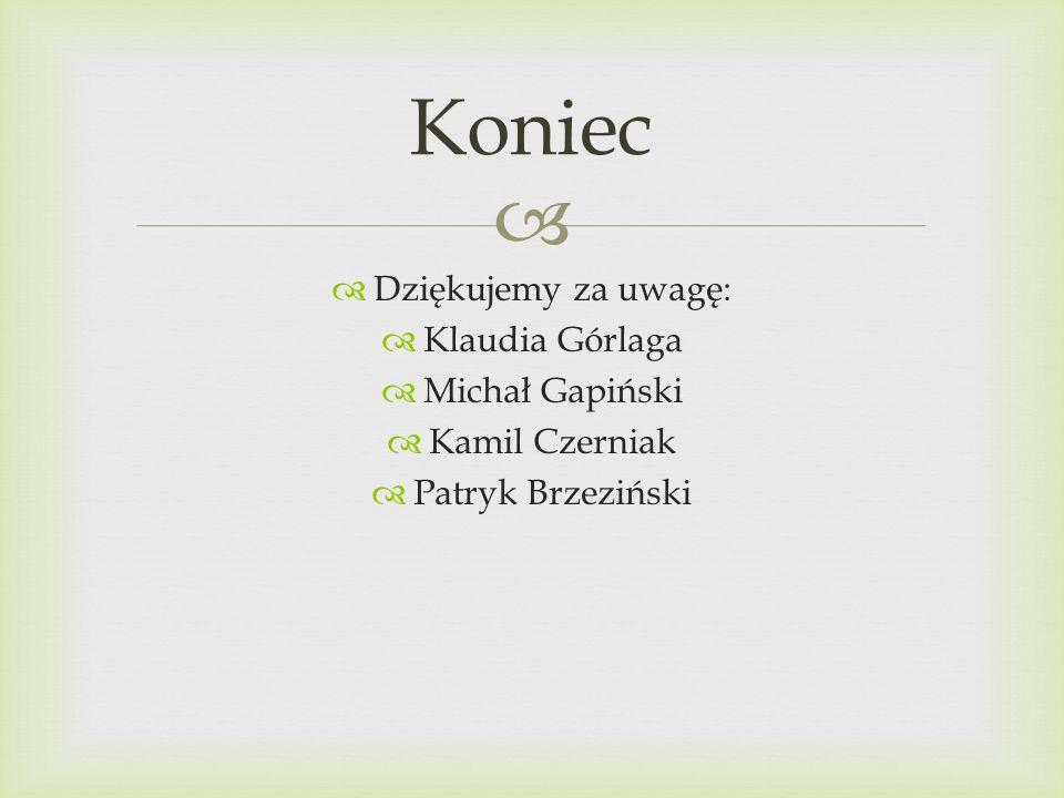 Dziękujemy za uwagę: Klaudia Górlaga Michał Gapiński Kamil Czerniak Patryk Brzeziński Koniec