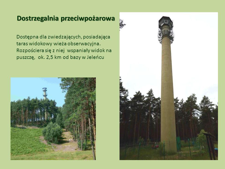 Dostrzegalnia przeciwpożarowa Dostępna dla zwiedzających, posiadająca taras widokowy wieża obserwacyjna.