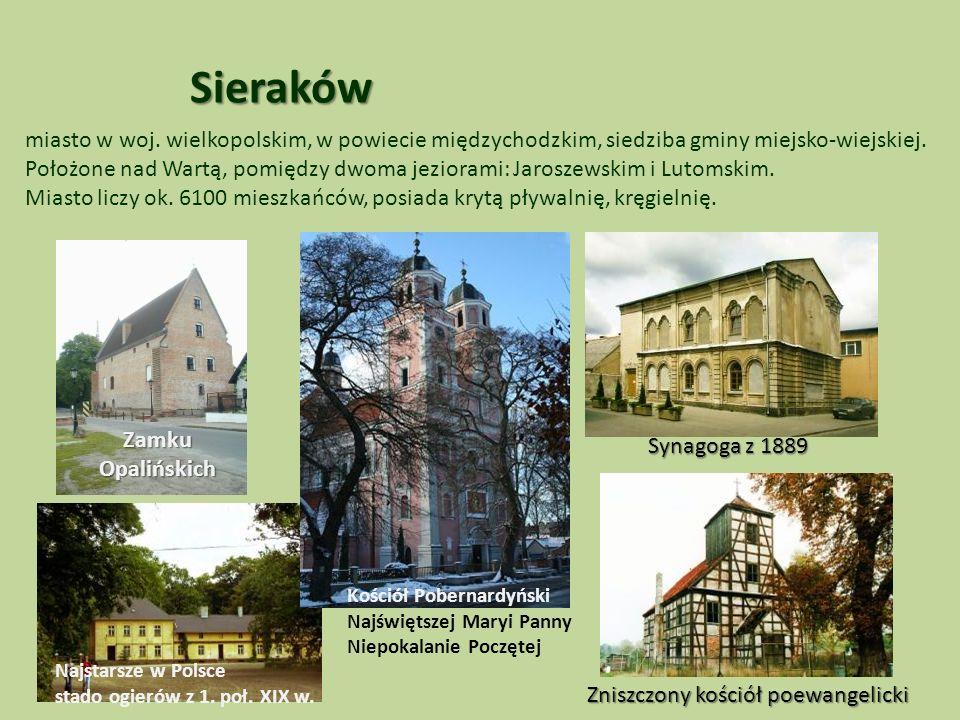 Sieraków miasto w woj.wielkopolskim, w powiecie międzychodzkim, siedziba gminy miejsko-wiejskiej.