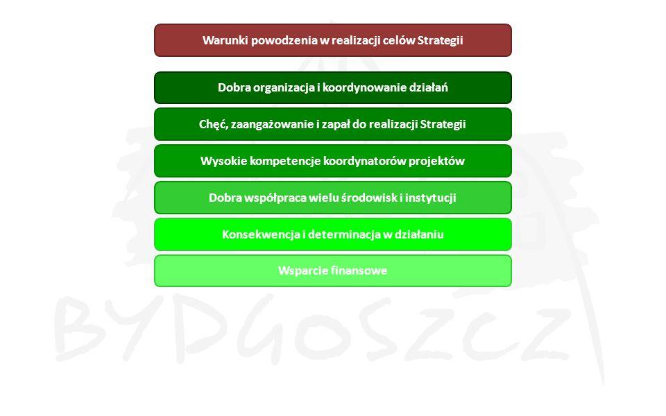 Dobra organizacja i koordynowanie działań Chęć, zaangażowanie i zapał do realizacji Strategii Wysokie kompetencje koordynatorów projektów Dobra współp