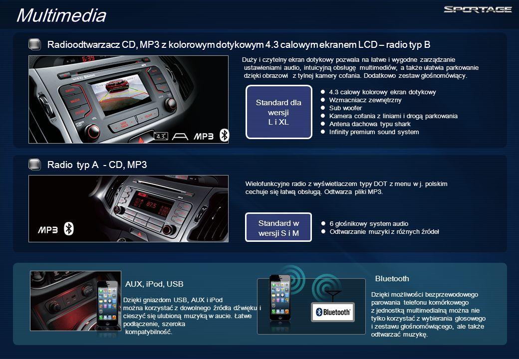 Multimedia Wielofunkcyjne radio z wyświetlaczem typy DOT z menu w j.