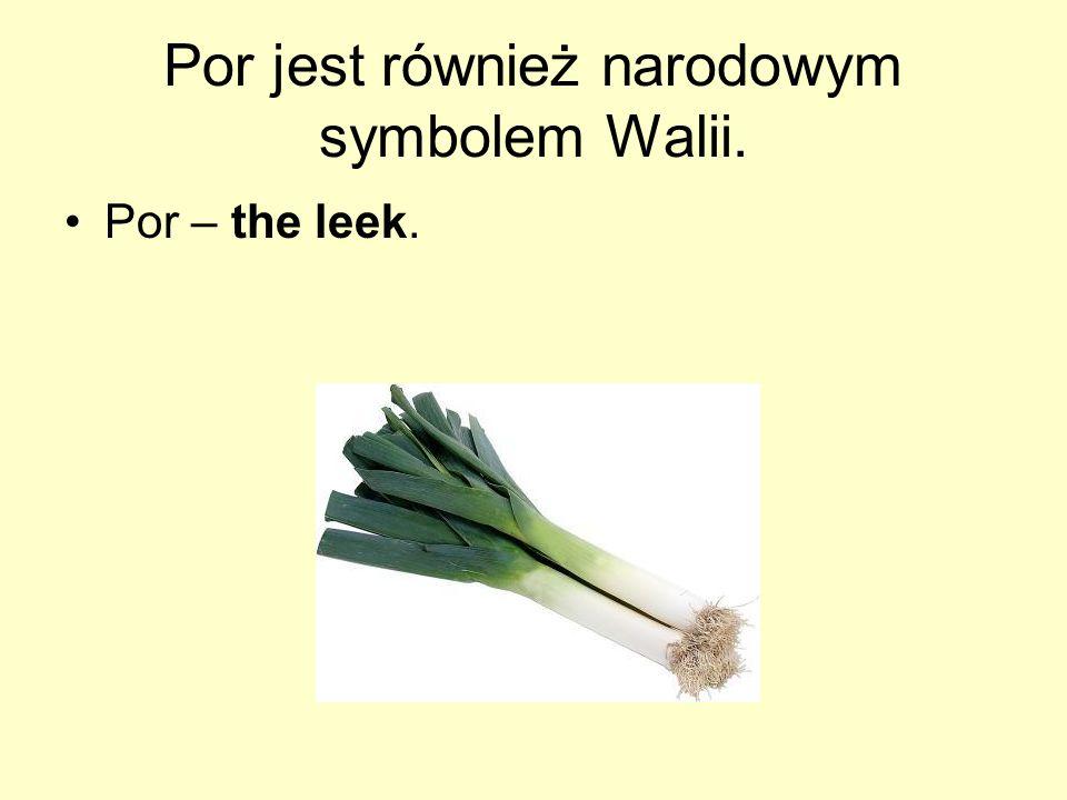 Por jest również narodowym symbolem Walii. Por – the leek.