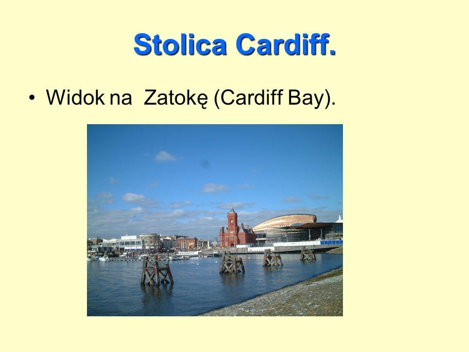 Stolica Cardiff. Widok na Zatokę (Cardiff Bay).