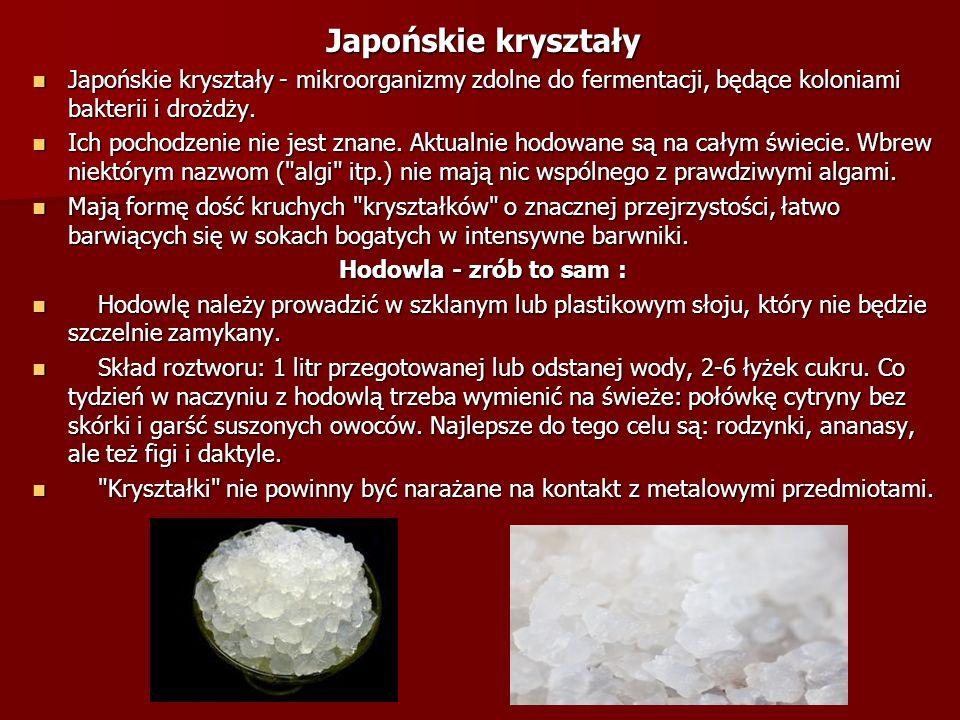 Japońskie kryształy Japońskie kryształy - mikroorganizmy zdolne do fermentacji, będące koloniami bakterii i drożdży. Japońskie kryształy - mikroorgani