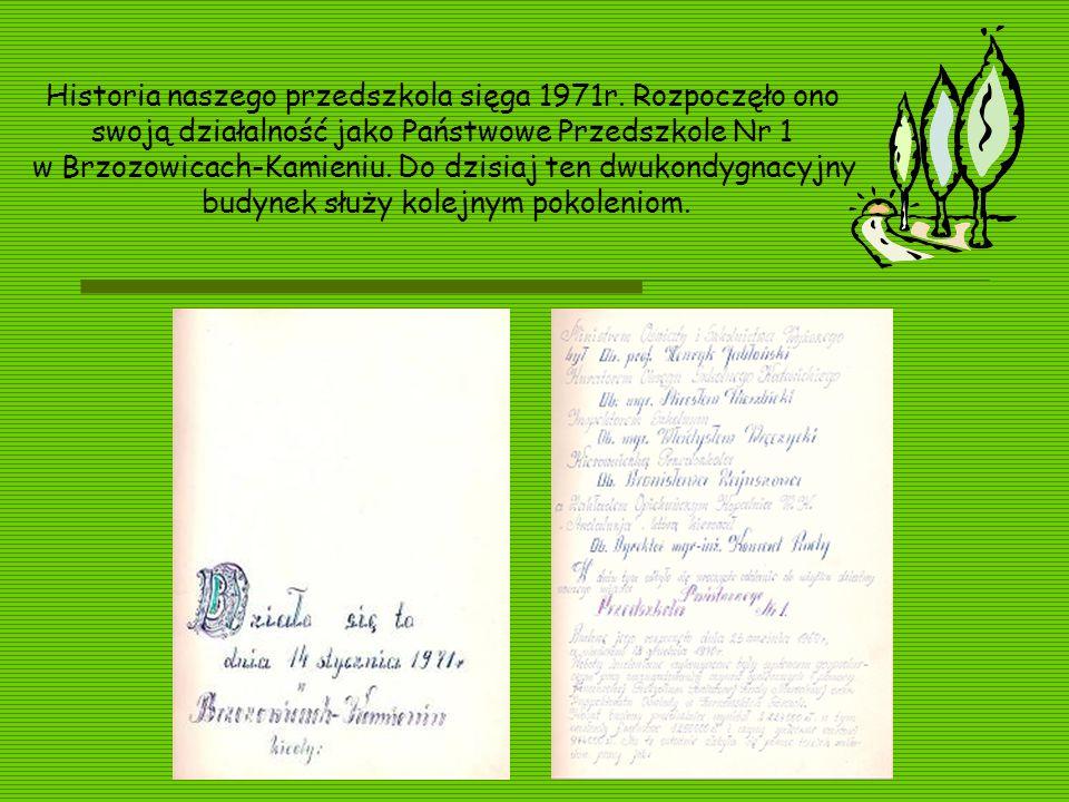 Historia naszego przedszkola sięga 1971r. Rozpoczęło ono swoją działalność jako Państwowe Przedszkole Nr 1 w Brzozowicach-Kamieniu. Do dzisiaj ten dwu