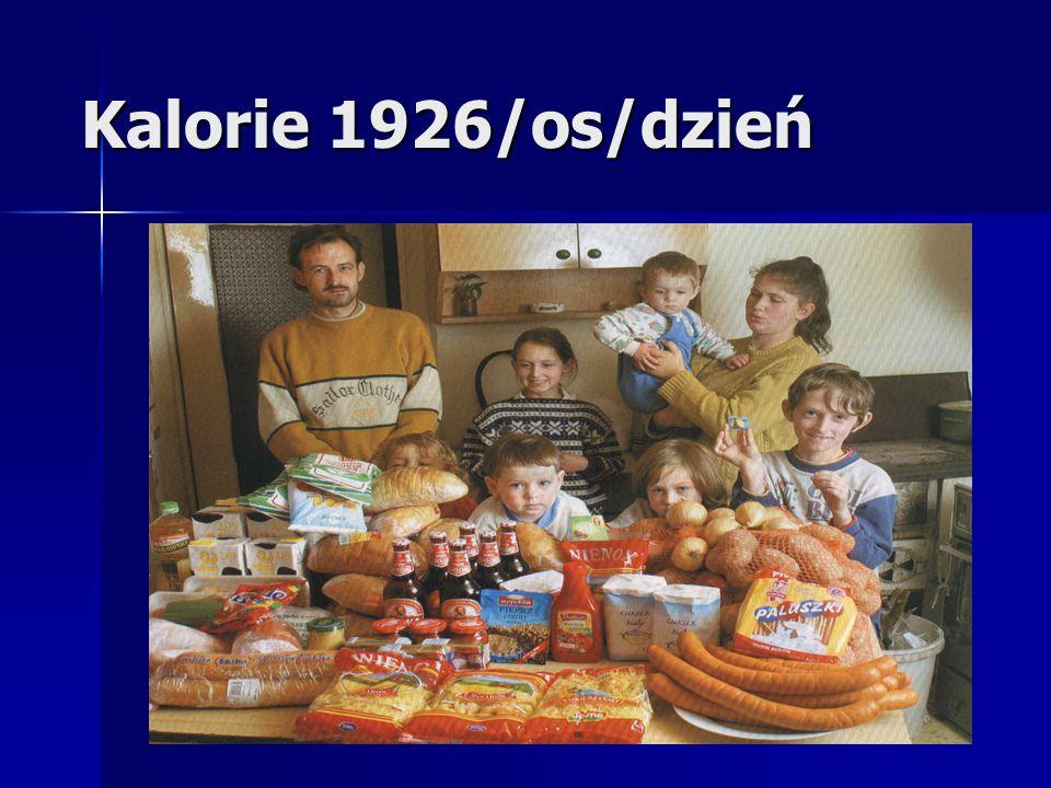 Osoby propagujące zdrowy styl życia poszukujące zdrowej żywności poszukujące zdrowej żywności wyczulone na zdrowy skład produktów wyczulone na zdrowy skład produktów osoby podchodzące z pasją i zamiłowaniem do tematów kalorii, odpowiedniej zawartości składników odżywczych w produktach osoby podchodzące z pasją i zamiłowaniem do tematów kalorii, odpowiedniej zawartości składników odżywczych w produktach