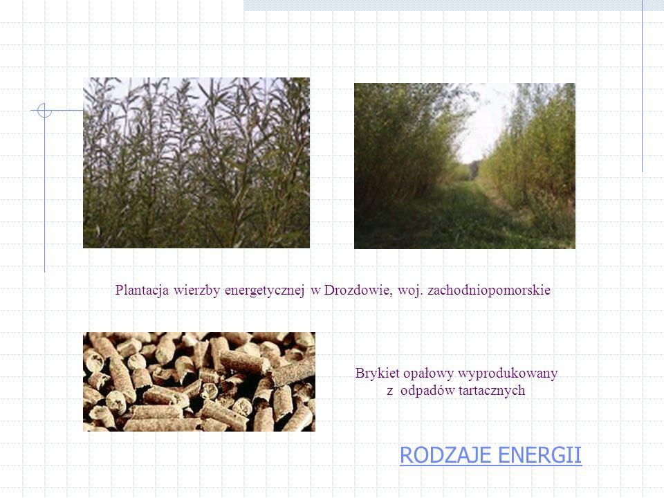 Obecnie w Polsce mnóstwo biomasy marnuje się; produkujemy rocznie ok. 25 mln. ton słomy z czego gnije bądź jest spalane na polach 8-12 mln. ton. Dodaj