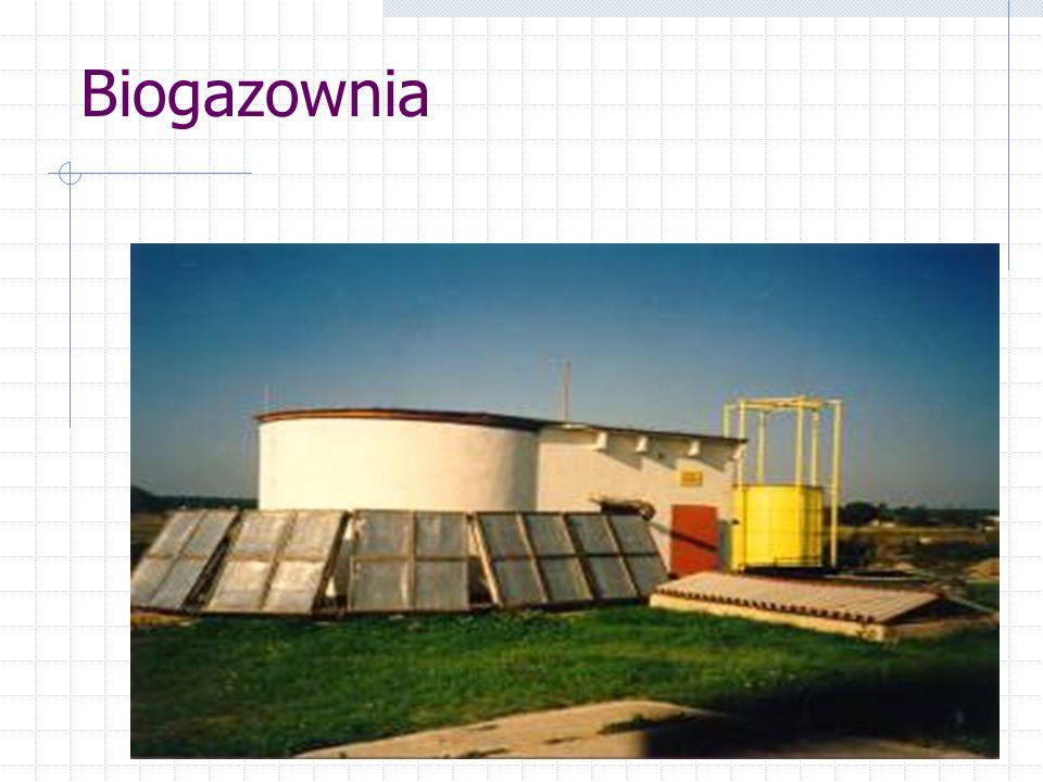 Produkcja biogazu z biomasy http://www.iep.pz.zgora.pl/aze/b_index.htm