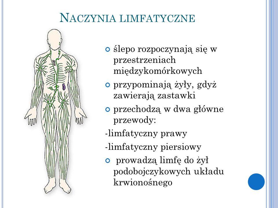 N ACZYNIA LIMFATYCZNE ślepo rozpoczynają się w przestrzeniach międzykomórkowych przypominają żyły, gdyż zawierają zastawki przechodzą w dwa główne przewody: -limfatyczny prawy -limfatyczny piersiowy prowadzą limfę do żył podobojczykowych układu krwionośnego