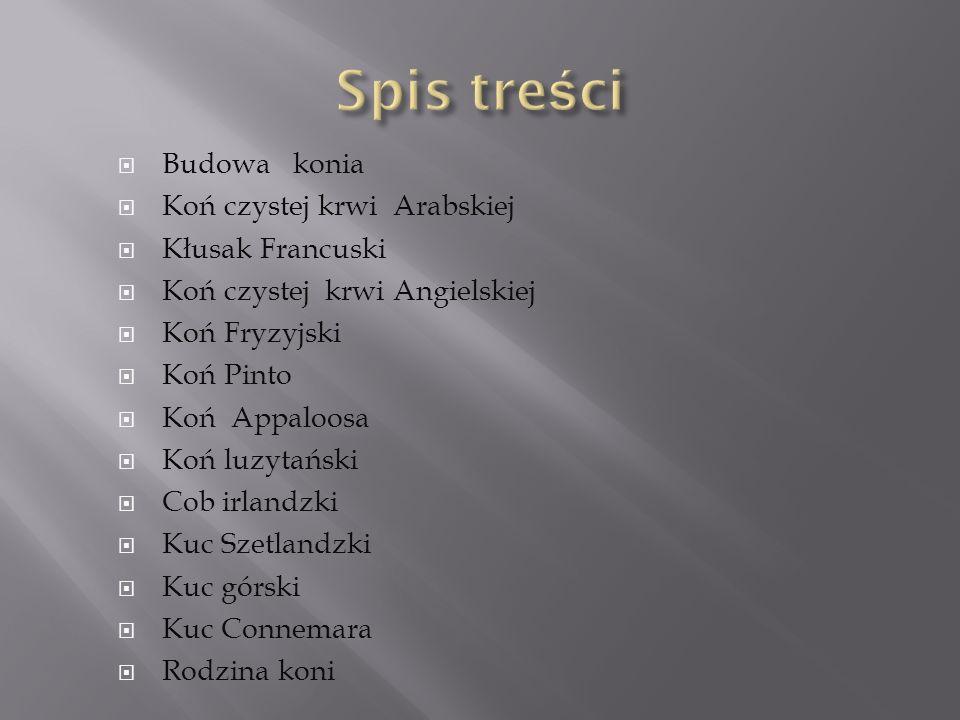 Opracowały : Wiktoria Flor i Paulina Pyszniak.