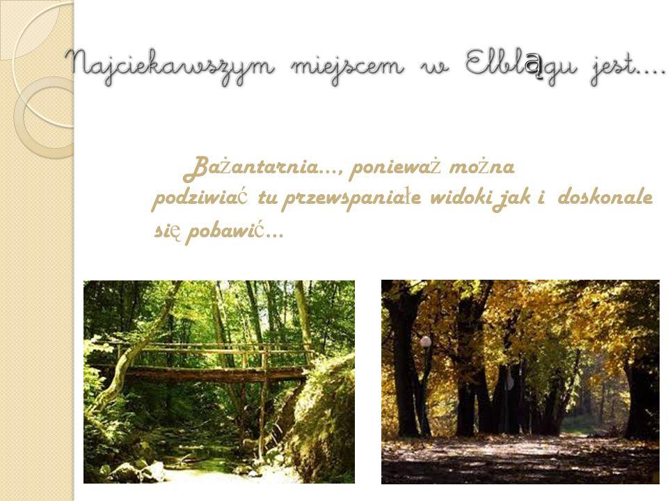 A to ciekawe… A to ciekawe… Bażantarnia - zabytkowy park leśny położony na skraju Wysoczyzny Elbląskiej, znajdujący się w granicach administracyjnych Elbląga.