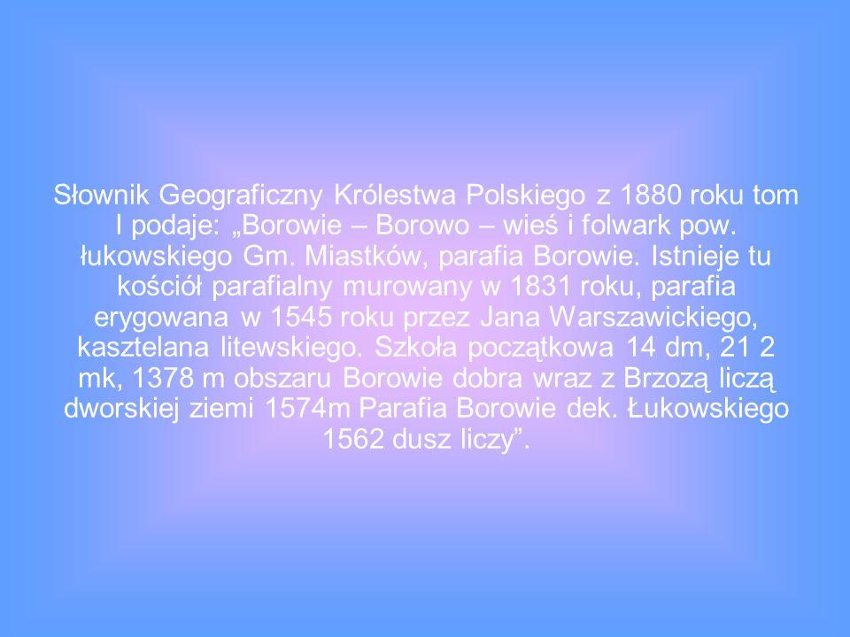 Słownik Geograficzny Królestwa Polskiego z 1880 roku tom I podaje: Borowie – Borowo – wieś i folwark pow. łukowskiego Gm. Miastków, parafia Borowie. I