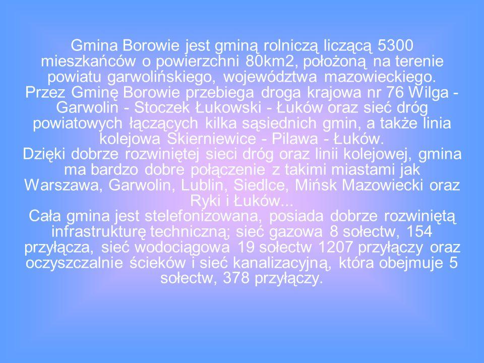 Gmina Borowie jest gminą rolniczą liczącą 5300 mieszkańców o powierzchni 80km2, położoną na terenie powiatu garwolińskiego, województwa mazowieckiego.