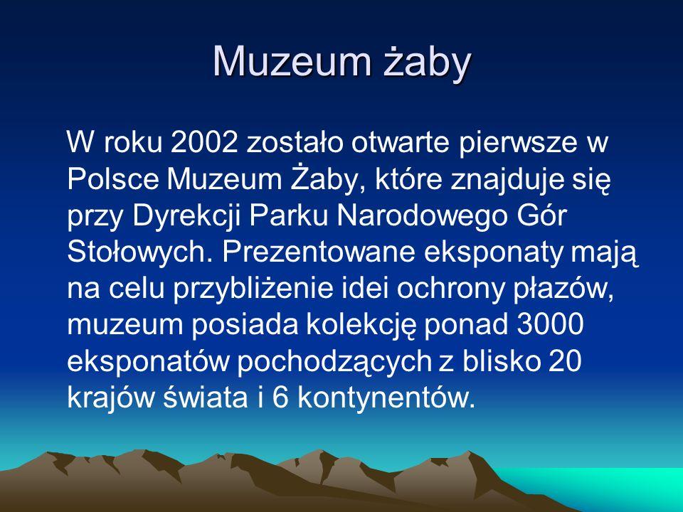 Muzeum żaby W roku 2002 zostało otwarte pierwsze w Polsce Muzeum Żaby, które znajduje się przy Dyrekcji Parku Narodowego Gór Stołowych. Prezentowane e
