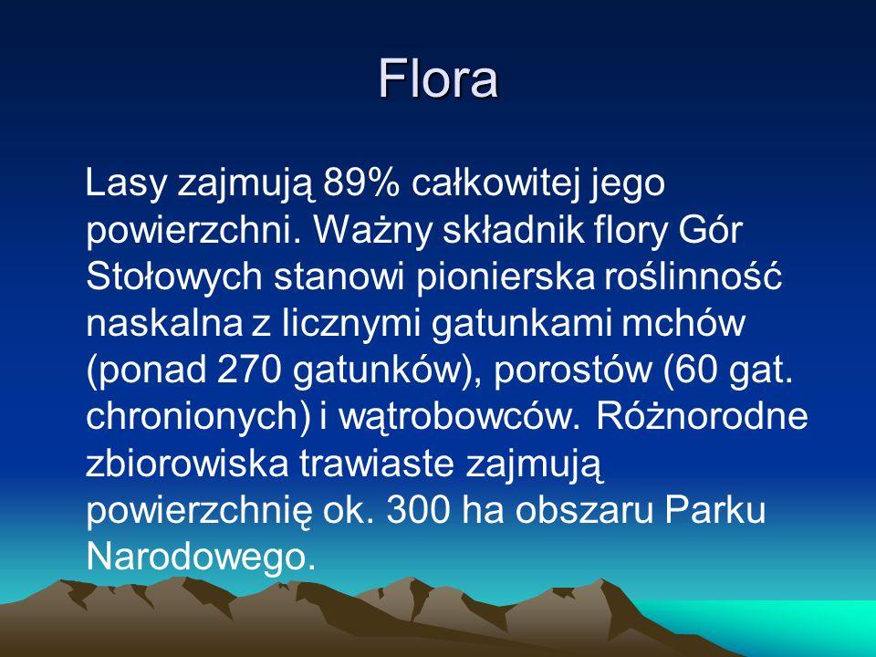 Flora Lasy zajmują 89% całkowitej jego powierzchni. Ważny składnik flory Gór Stołowych stanowi pionierska roślinność naskalna z licznymi gatunkami mch
