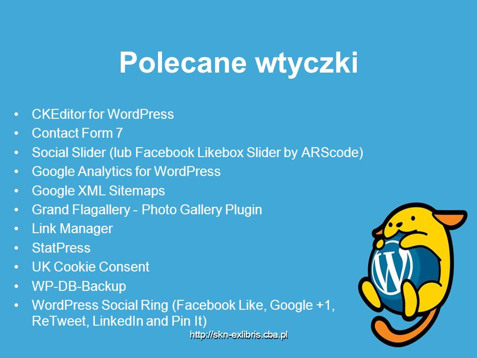 Polecane wtyczki CKEditor for WordPress Contact Form 7 Social Slider (lub Facebook Likebox Slider by ARScode) Google Analytics for WordPress Google XM