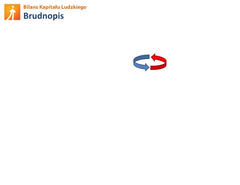 Bilans Kapitału Ludzkiego Podnoszenie kompetencji – motywacje Źródło: BKL – Badanie Ludności 2012.