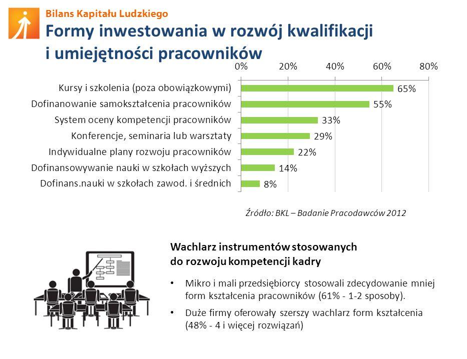 Bilans Kapitału Ludzkiego Formy inwestowania w rozwój kwalifikacji i umiejętności pracowników Wachlarz instrumentów stosowanych do rozwoju kompetencji