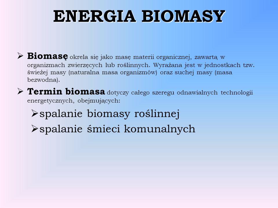ENERGIA BIOMASY Biomasę okrela się jako masę materii organicznej, zawartą w organizmach zwierzęcych lub roślinnych. Wyrażana jest w jednostkach tzw. ś