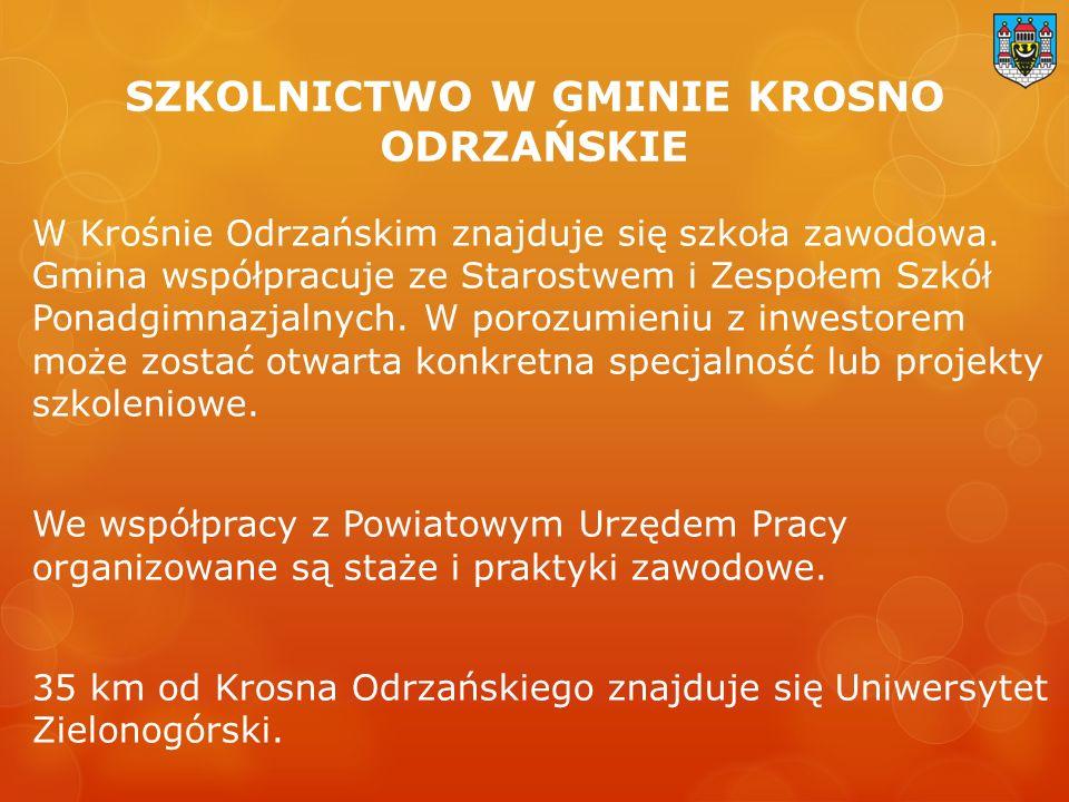 SZKOLNICTWO W GMINIE KROSNO ODRZAŃSKIE W Krośnie Odrzańskim znajduje się szkoła zawodowa.