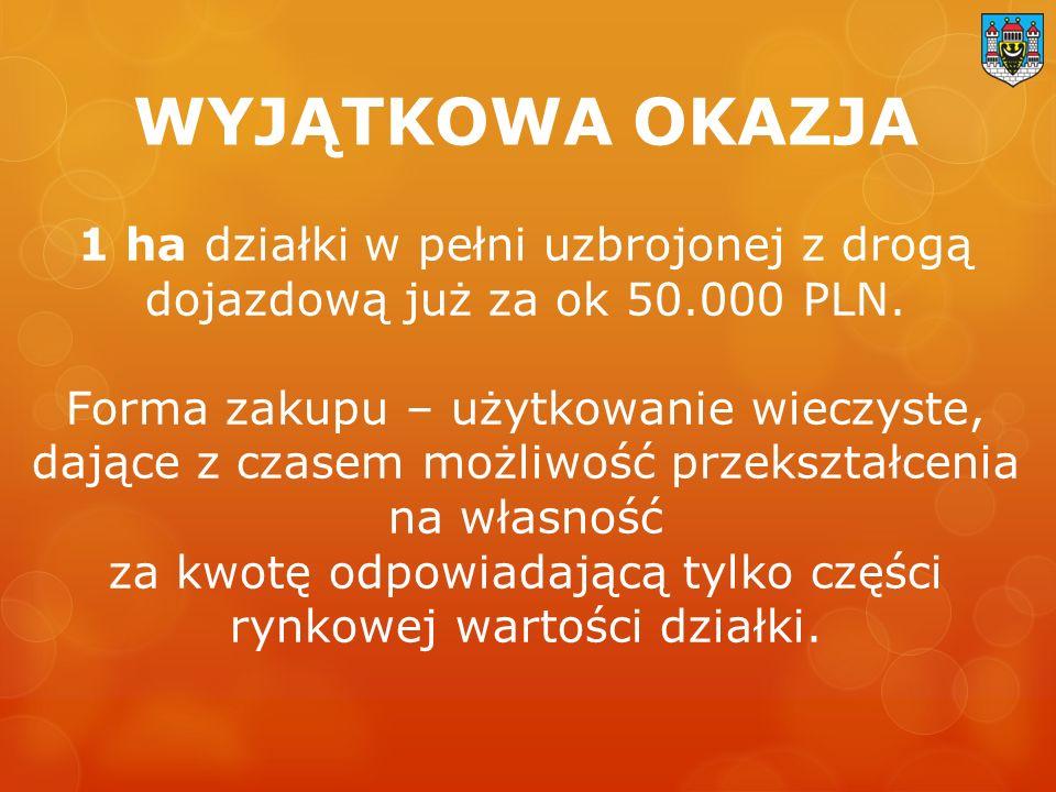 1 ha działki w pełni uzbrojonej z drogą dojazdową już za ok 50.000 PLN.
