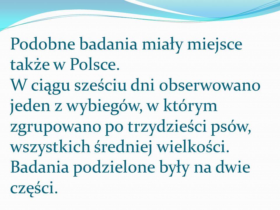 Podobne badania miały miejsce także w Polsce. W ciągu sześciu dni obserwowano jeden z wybiegów, w którym zgrupowano po trzydzieści psów, wszystkich śr
