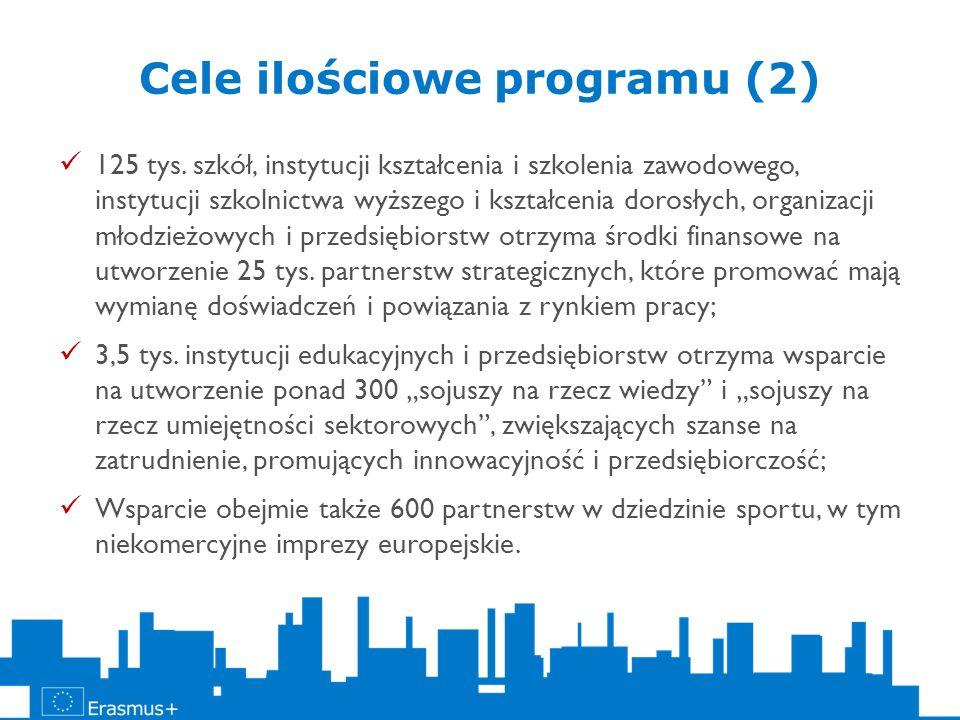 Cele ilościowe programu (2) 125 tys. szkół, instytucji kształcenia i szkolenia zawodowego, instytucji szkolnictwa wyższego i kształcenia dorosłych, or