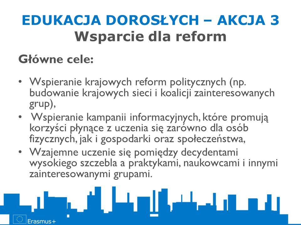 EDUKACJA DOROSŁYCH – AKCJA 3 Wsparcie dla reform Główne cele: Wspieranie krajowych reform politycznych (np. budowanie krajowych sieci i koalicji zaint