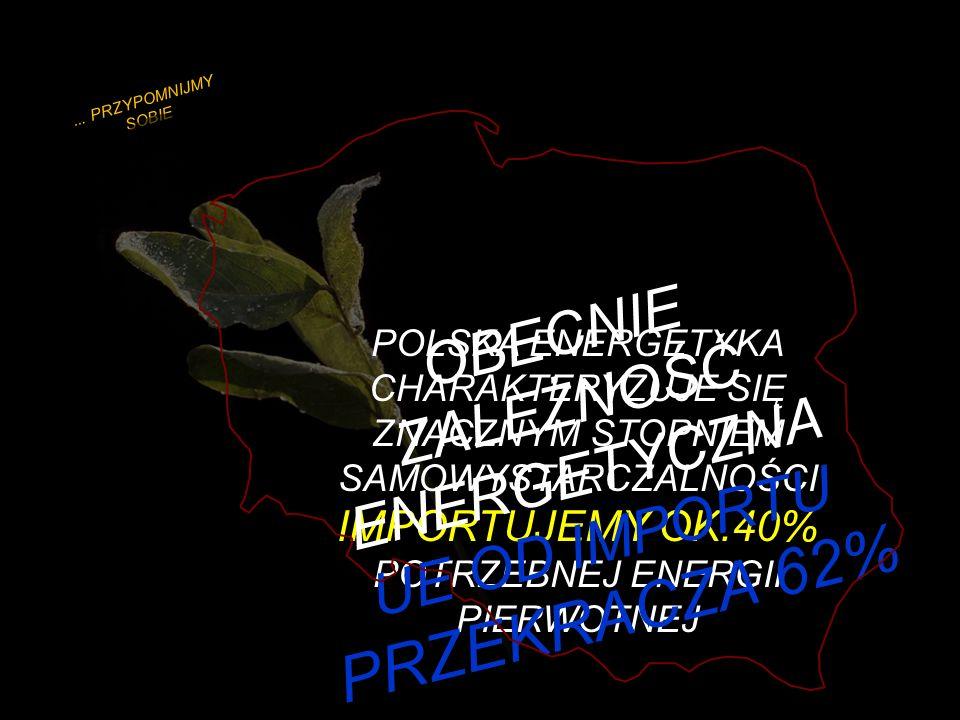 POLITYKA ENERGETYCZNA POLSKI DO ROKU 2030 - PROJEKT -...