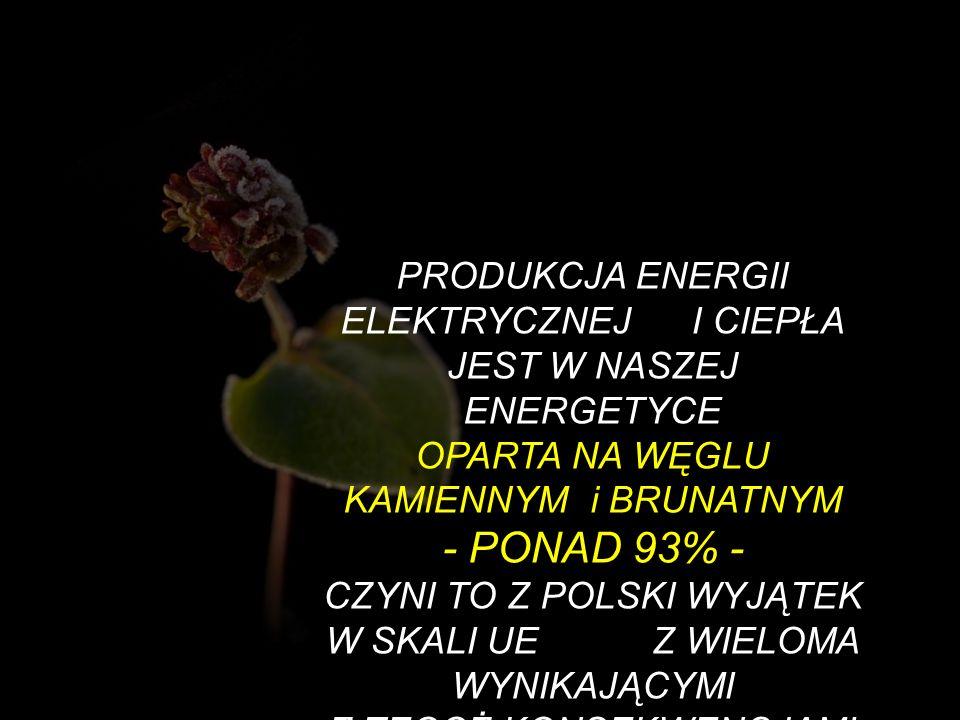 PRODUKCJA ENERGII ELEKTRYCZNEJ I CIEPŁA JEST W NASZEJ ENERGETYCE OPARTA NA WĘGLU KAMIENNYM i BRUNATNYM - PONAD 93% - CZYNI TO Z POLSKI WYJĄTEK W SKALI
